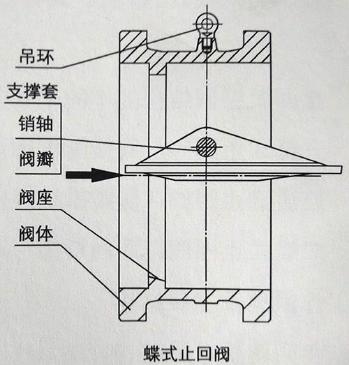 蝶式止回阀结构图