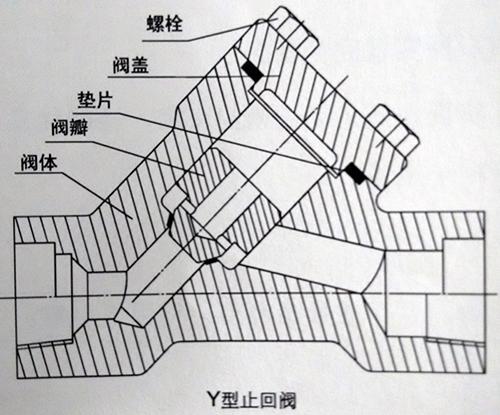 Y型止回阀结构图